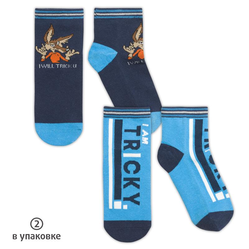 BEG3215(2) носки для мальчиков (2 пар в кор.)